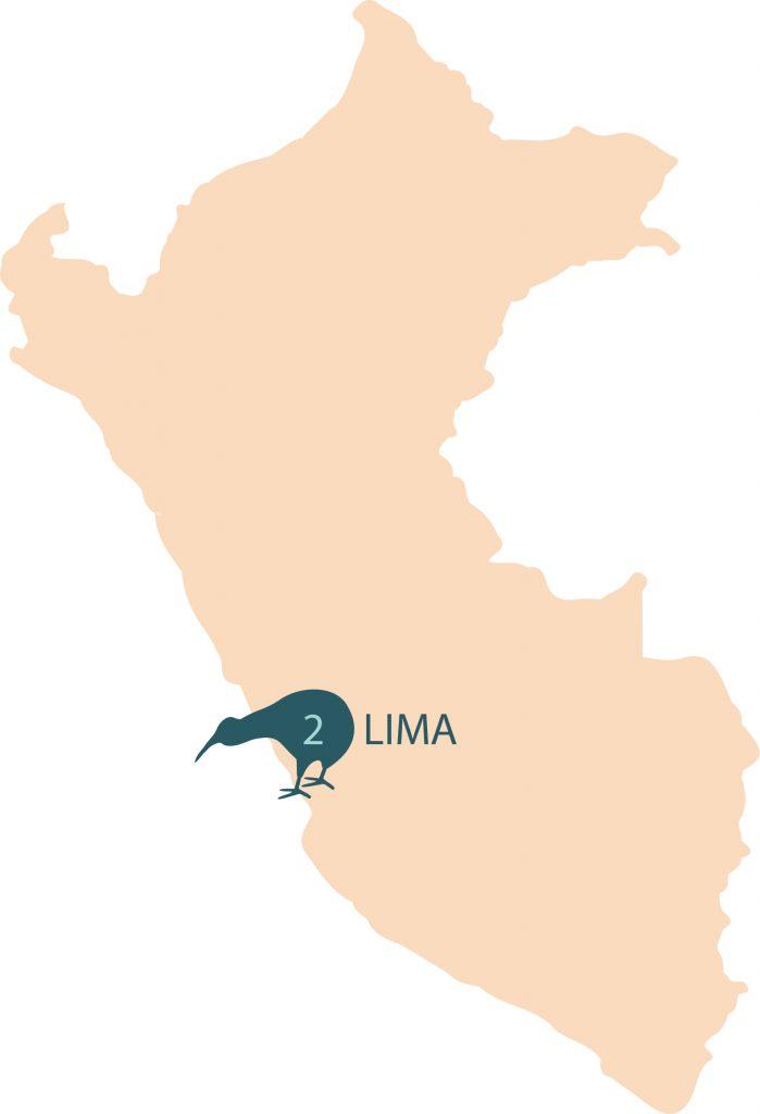 Numero de centros eMedical por Ciudades en Perú
